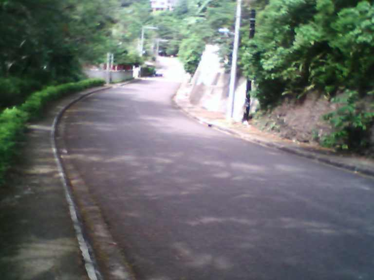 Road leading to the Taoist Temple